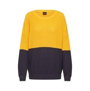 Iriedaily Sveter 'Emma Peel Knit'  námornícka modrá / žlté