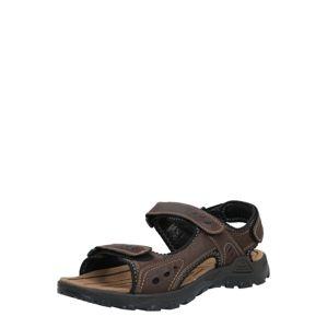 TOM TAILOR Sandále  hnedá / čierna