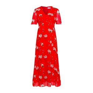 IVY & OAK Dress  béžová / červené