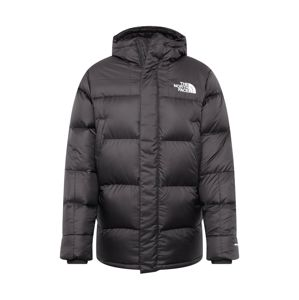 THE NORTH FACE Zimná bunda 'Deptford'  tmavosivá