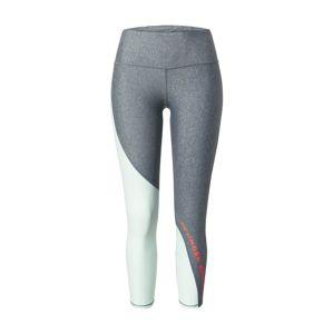 UNDER ARMOUR Športové nohavice  tmavosivá / opálová / oranžovo červená