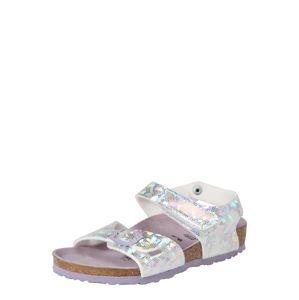 BIRKENSTOCK Sandále 'Colorado'  fialová / striebornosivá